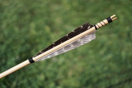 An arrow and quiver