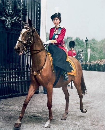 Our Queen on Police Horse Winston